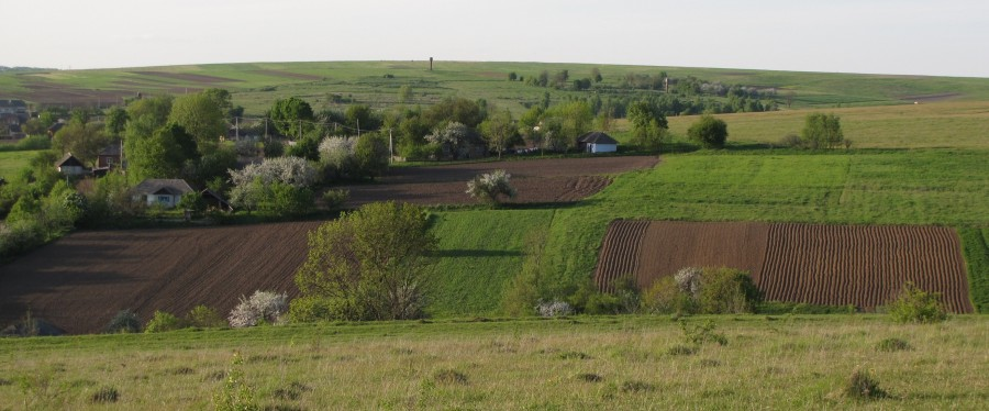 Українське село навесні