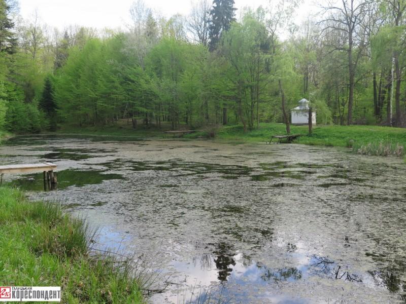 діброва озеро