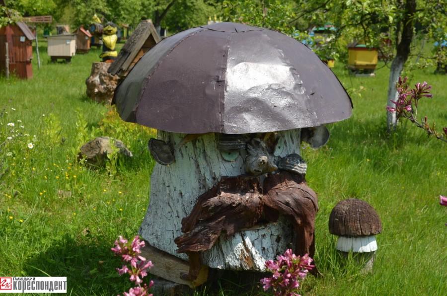 Картинки по запросу цікаві фото пасік в Польщі