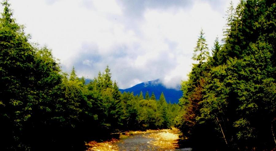 димить гора Перегінське Яйно
