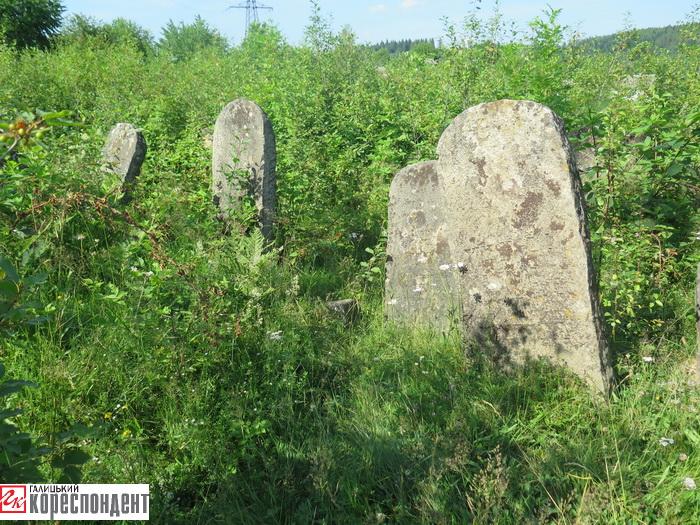 єврейський цвинтар делятин
