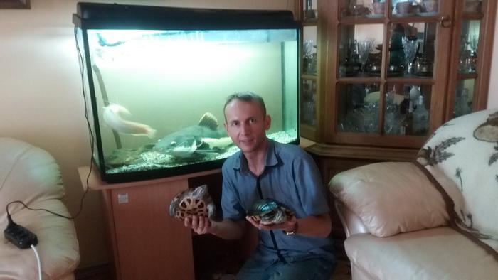 риби-хижаки