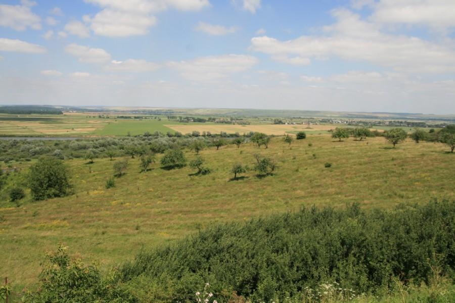 Краєвиди у Шевченковому