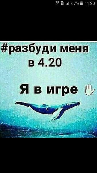 16603153_672243396291929_5773871510451878312_n