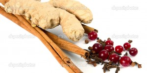 Cinnamon, carnation, ginger root and cranberry on white background. Spices and berries for a curative drink.