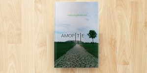 аморте-792x509
