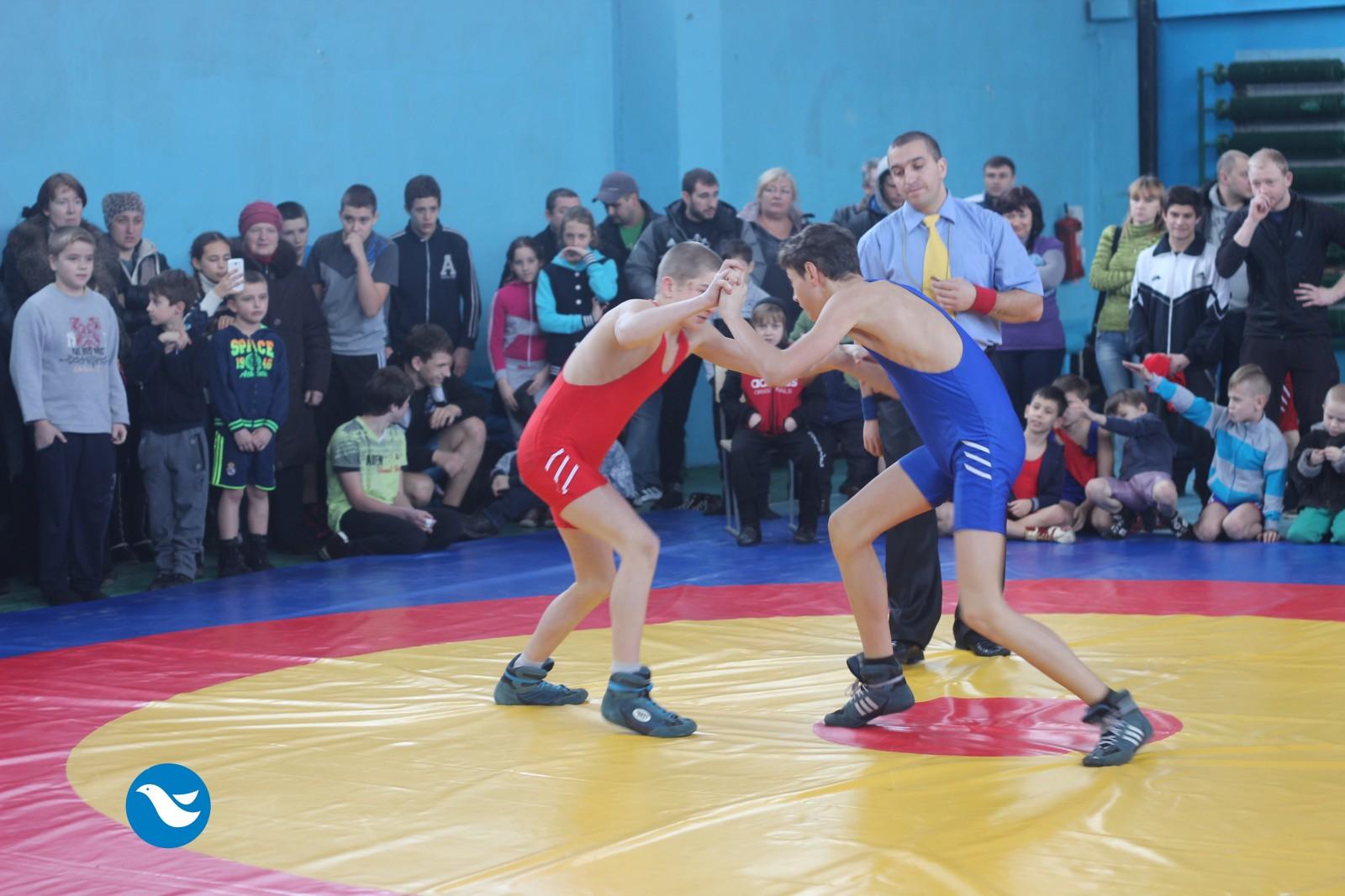 У Коломиї відбувся турнір з вільної боротьби (відеосюжет)
