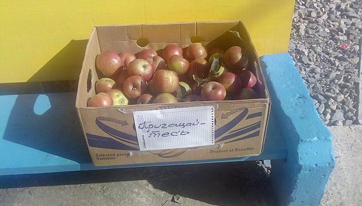 У Коломиї чоловік вирішив безкоштовно пригостити людей яблуками